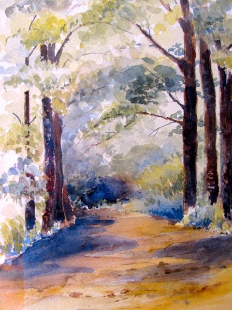 Woodland Path.